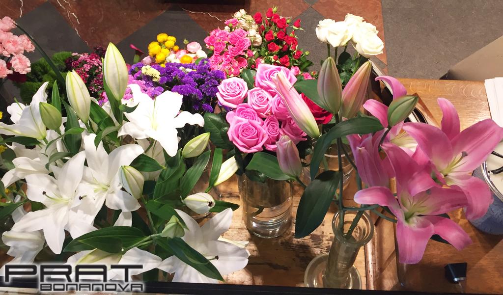 Portfolio de plantas y decoraci n floral de temporada for Plantas temporada